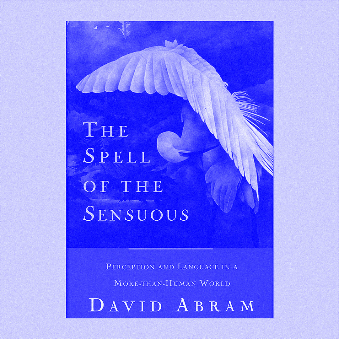 The Spell of the Sensuous - David Abram